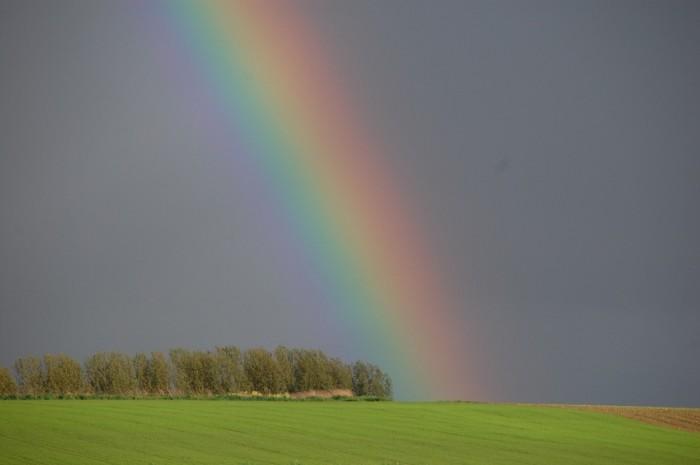 rainbow-110953_960_720