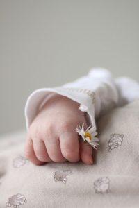 hand-1270531_960_720
