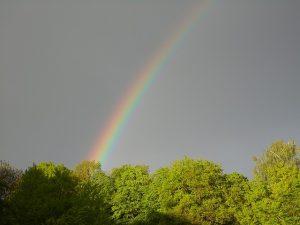 rainbow-339895_640