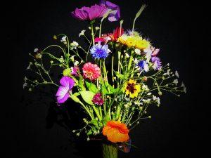 wildflowers-1539691_640