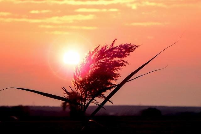 sunrise-1809371_640